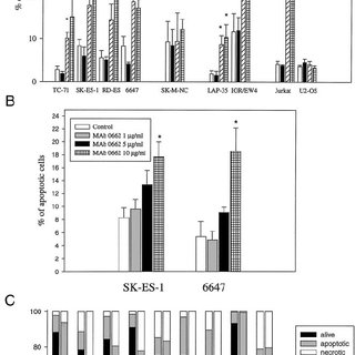 Treatment of athymic mice with anti-CD99 MAb 0662 (40  g