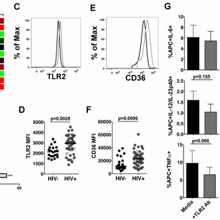 Enhanced inflammatory response by APCs from HIV-infected