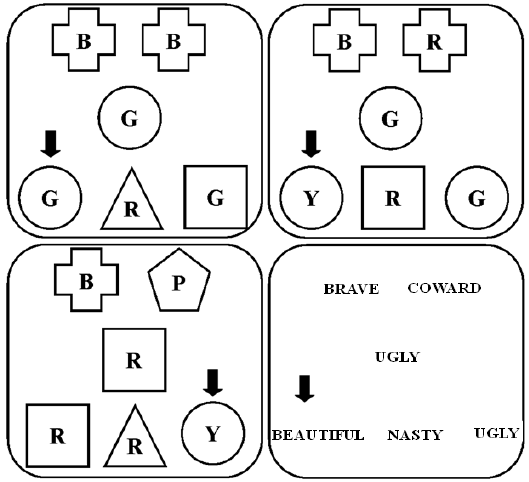 Typical arrangement of second-order matching-to-sample