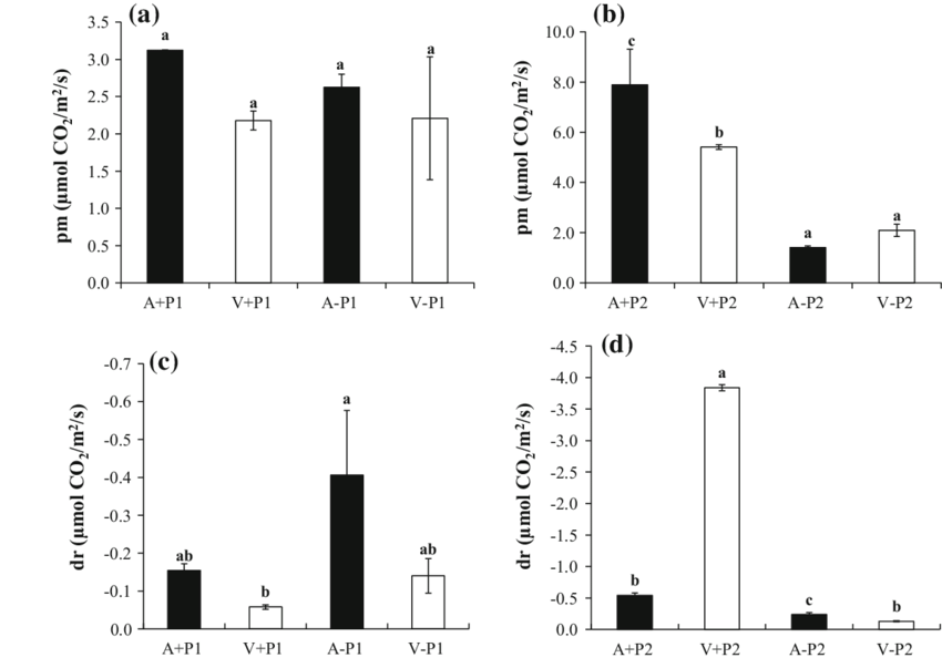 Leaf photosynthetic rates (pm) and leaf dark respiration
