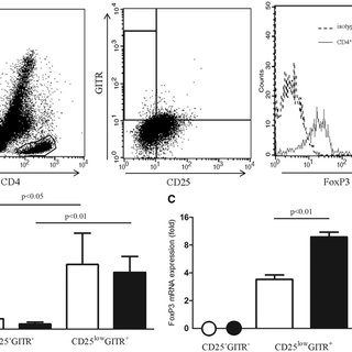 (PDF) Characterization of a new regulatory CD4+ T cell