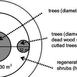 (PDF) Occurrence and distribution of alien invasive tree