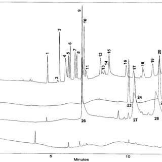 Electropherograms of peaks that overlapped in buffer S