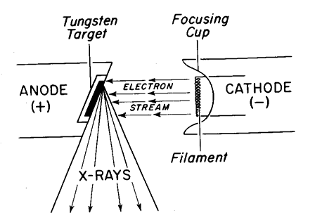 5. Basic principles of x-ray imaging. (a) Elements