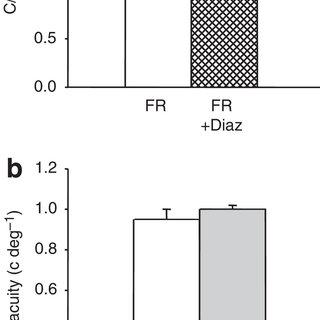 (PDF) Food restriction enhances visual cortex plasticity