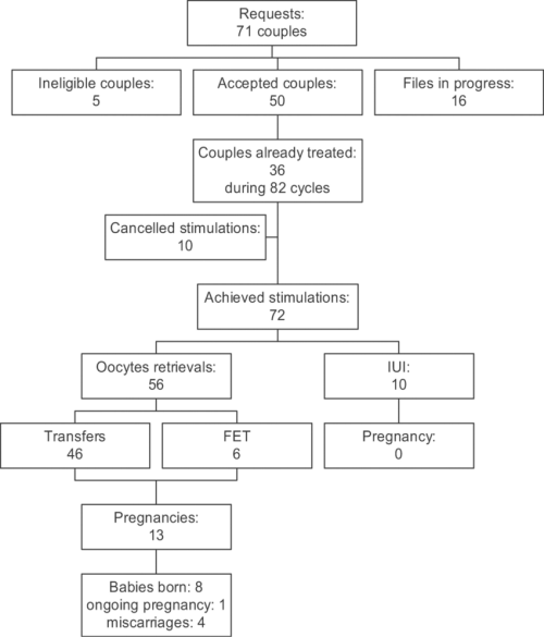 small resolution of flow chart fet frozen embryo transfer