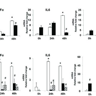 QRT-PCR analysis of whole liver expression of TNFα, IL6