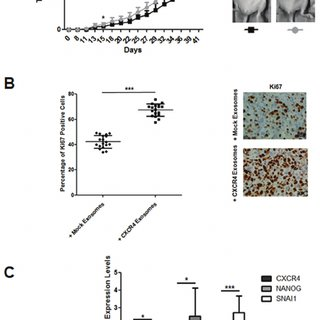 (PDF) Exosomes enriched in stemness/metastatic-related