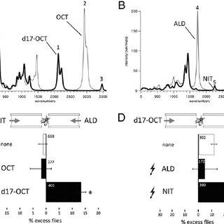 (PDF) Molecular vibration-sensing component in Drosophila