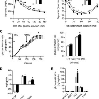 (PDF) SIRT1 enhances glucose tolerance by potentiating
