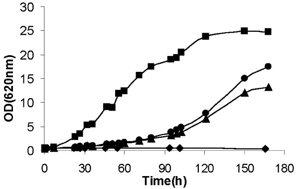 Aerobic growth of S. cerevisiae recombinant strains