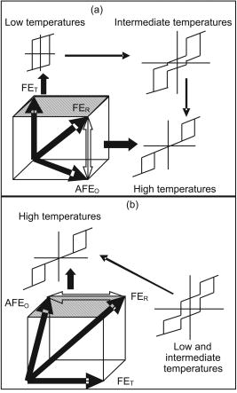 Coexistence of Ferroelectricity and Antiferroelectricity