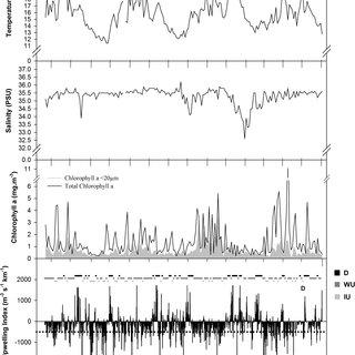 (PDF) Phytoplankton dynamics in relation to seasonal