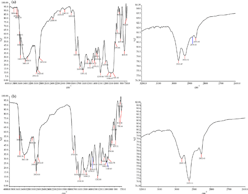 FT-IR spectra of Rifaximin (a) and 802 impurity (b