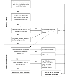 history taking and physical examination tool for lower leg pain in clinical sports medicine practice  [ 850 x 982 Pixel ]