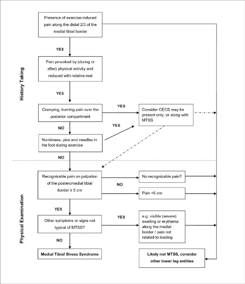 hight resolution of history taking and physical examination tool for lower leg pain in clinical sports medicine practice