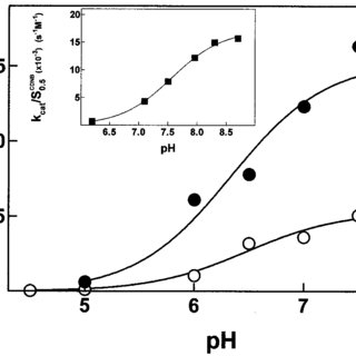 (PDF) Catalytic Mechanism and Role of Hydroxyl Residues in