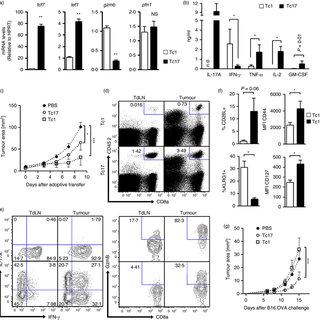 (PDF) CD73-mediated adenosine production promotes stem