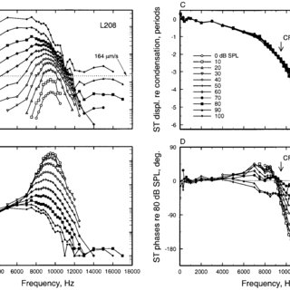 Frequency tuning of BM vibrations and auditory-nerve