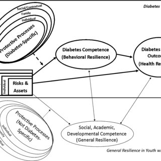 (PDF) Diabetes Resilience: A Model of Risk and Protection