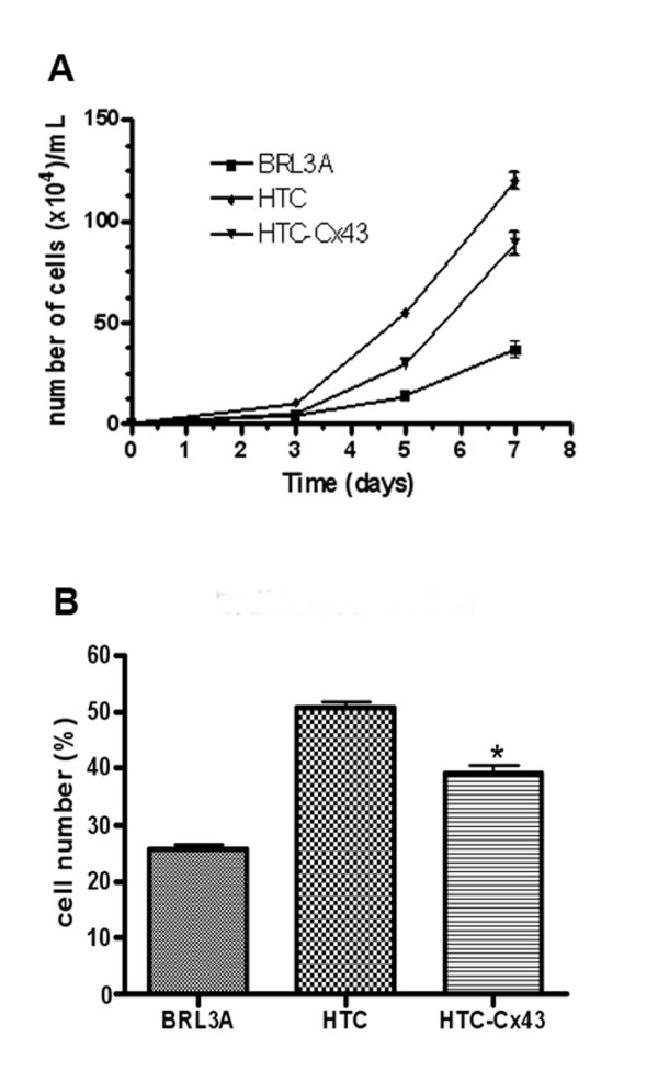 Cell proliferation: A) Growth curve of the BRL3A, HTC and