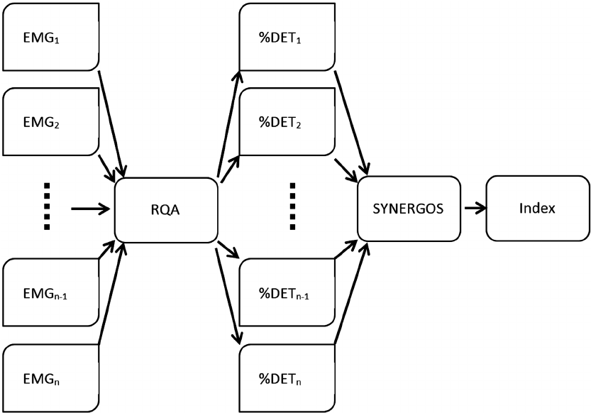 Schematic view of the SYNERGOS algorithm. EMG signals are