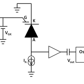 -Unity gain amplifier using the gated diode in common