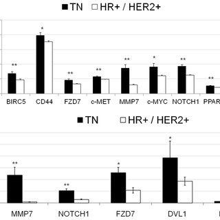 (PDF) Differential Activation of Wnt-β-Catenin Pathway in
