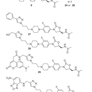 Known structure-activity relationships of oxazolidinone