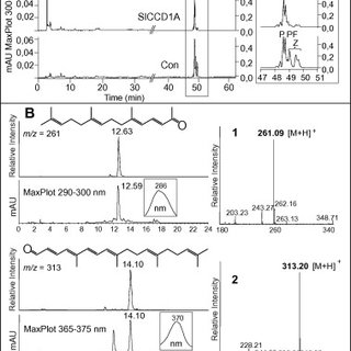HPLC analysis of incubations with β-apo-8′-carotenal. (A