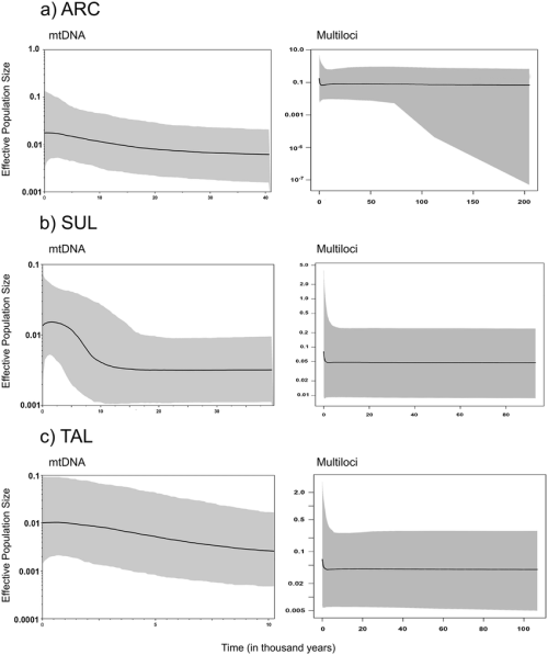 small resolution of extended bayesian skyline plot for mtdna left and multiloci right data for