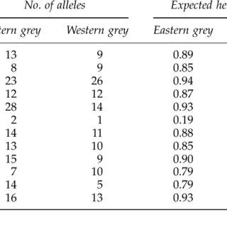 Scores of individual grey kangaroo microsatellite