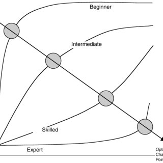 (PDF) Challenge Point: A Framework for Conceptualizing the