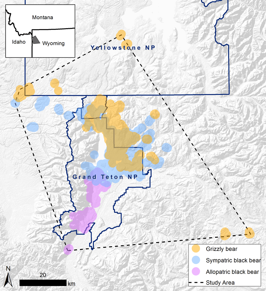hight resolution of the study area centered on grand teton national park wyoming usa as defined