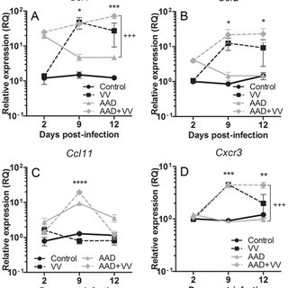 Serum levels of (A) OVA-specific IgE, (B) VV-specific