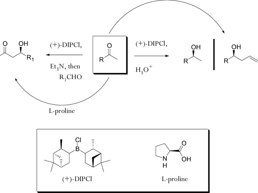 Scheme 76: Asymmetric reactions mediated by L-proline