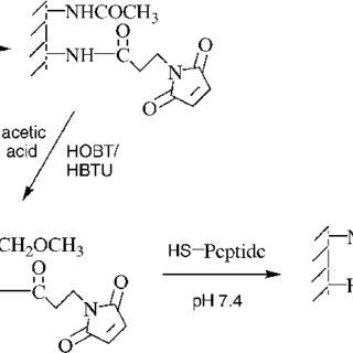 Scheme 1. Hydrolysis equilibrium of a monoalkylsilane