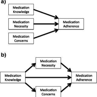 (PDF) Understanding barriers to optimal medication