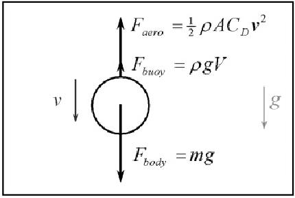 Free-body diagram of falling ball showing body, buoyancy