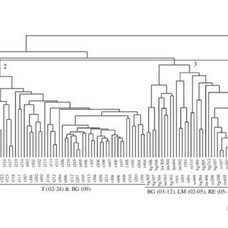 (PDF) Foraging in Non-Native Environments: Comparison of