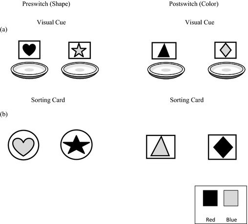 Examples of (a) visual cues and (b) sorting cards in the