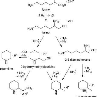 (PDF) Lysinol: A renewably resourced alternative to