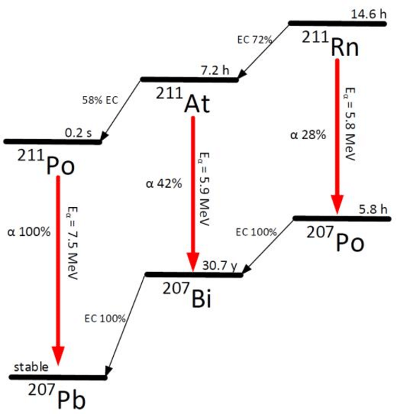 A simplified decay scheme showing the important