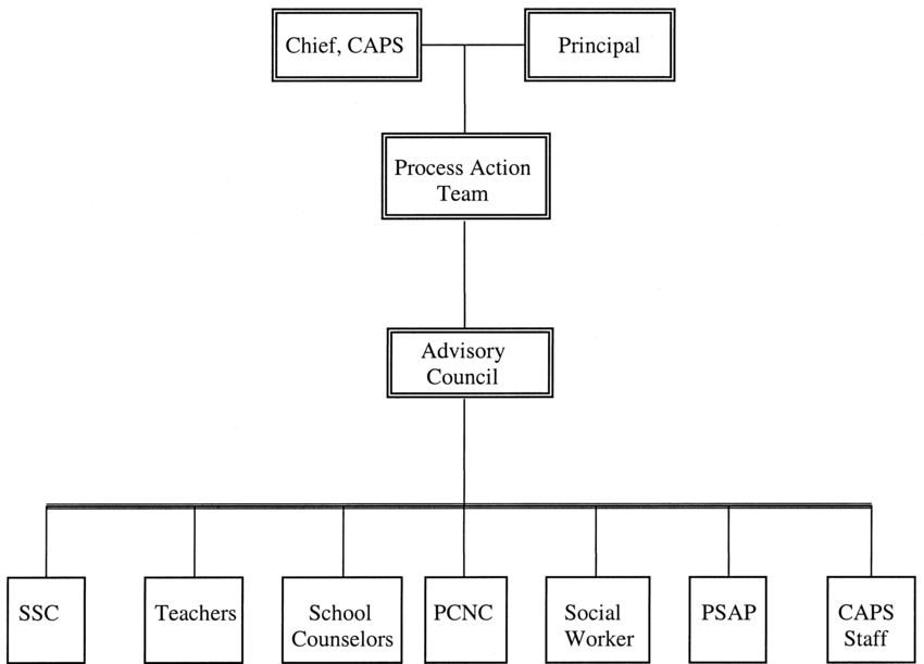 Organizational structure of the Solomon Wellness for