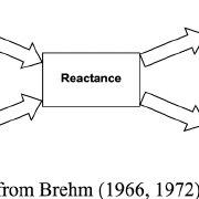 (PDF) Consumer reactance against loyalty programs