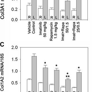 TGF- h activates mTORC1 via a PI3K-Akt-TSC2–dependent