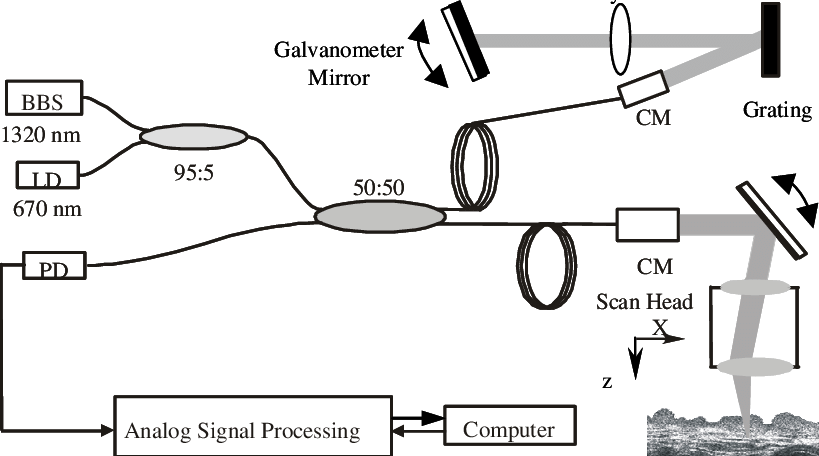 Schematic diagram of the fiber optic OCT system. BBS