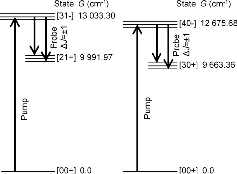 FIG. 2. An energy level diagram showing the vibrational