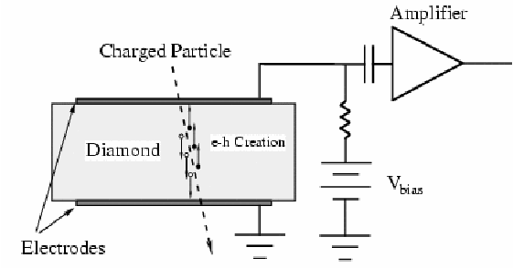 Schematic layout of a diamond particle detector