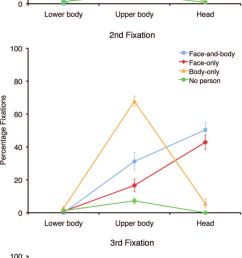 mean percentage fixations to the lower body upper body and the head for all [ 850 x 2152 Pixel ]